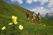 Viaggi Sport Vacanza Estate Dolomiti Trekking Nordic Walking