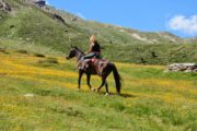 Viaggi Sport Vacanza Multisport Estate Trentino Val di Sole Escursioni a Cavallo