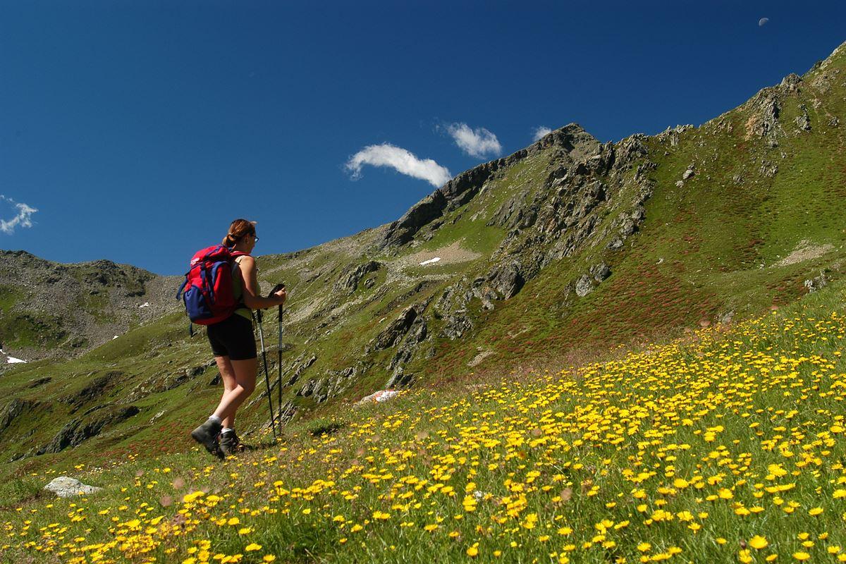 Viaggi Sport Vacanza Multisport Estate Trentino Val di Sole Trekking Nordic Walking