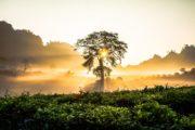 Viaggio in Vietnam Tour Easy Avventura Scoperta Oriente Asia