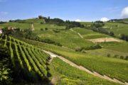 Bici Piemonte Langhe Patrimonio Unesco