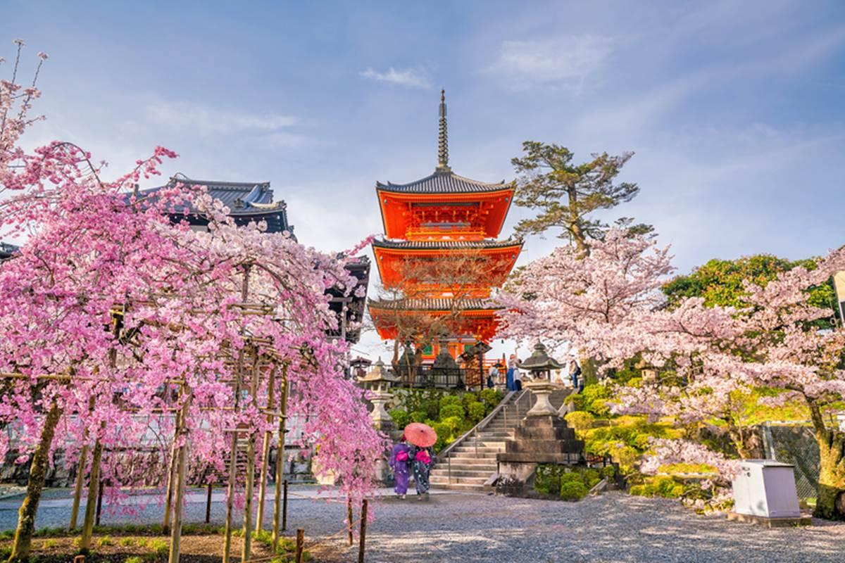 Viaggio di nozze sci giappone tour japan rail pass